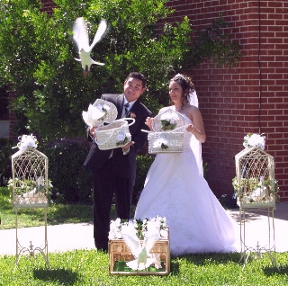 Bride and Groom release doves.